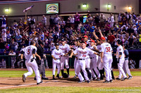 2014-08-01 Cats vs Scrappers