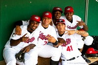 2014-06-16 Cats vs Spinners
